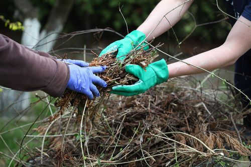 two people cleaning up green waste in their garden with blue and green gloves